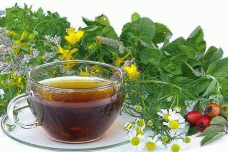Состав и свойства белорусского монастырского чая от простатита, цены и отзывы