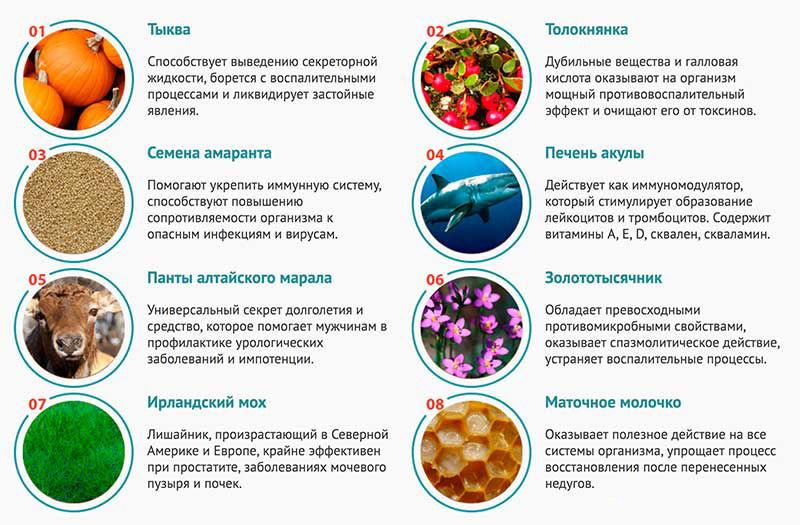 инфографика о составе препарата