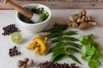 Чем лечить болезни простаты у мужчины: народные средства и традиционная медицина