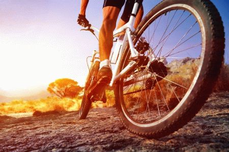 Как влияют на простатит езда на велосипеде, бег и другие виды спорта