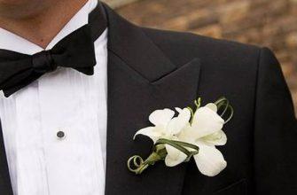 Мужские парфюмы с феромонами: миф или реальность, принцип работы и стоимость